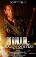 ნინძა 2 (ქართულად) / Ninja: Shadow of a Tear