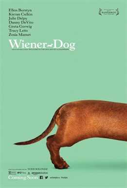 ტაქსა / Wiener-Dog (ქართულად)