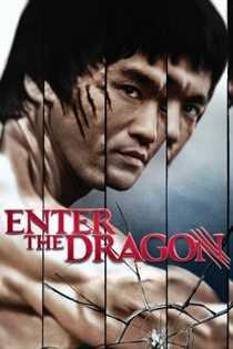 დრაკონის გამოსვლა / Enter the Dragon   (ქართულად)