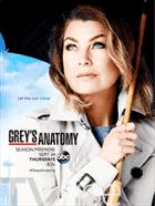 გრეის ანატომია სეზონი 12 (ქართულად) / Grey's Anatomy Season 12 / greis anatomia sezoni 12 (qartulad)