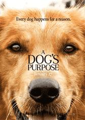 """ძაღლური ცხოვრება (ქართულად) / A Dog""""s Purpose / zagluri cxovreba (qartulad)"""