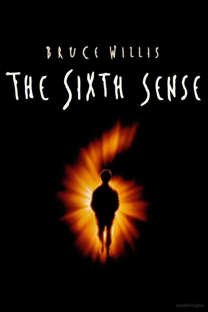 მეექვსე გრძნობა / The Sixth Sense  (ქართულად)