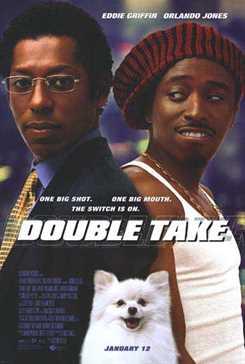 ორმაგი უსიამოვნება  / Double Take (ქართულად)