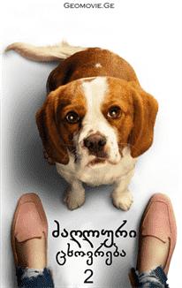 ძაღლური ცხოვრება 2 (ქართულად) / A Dog's Journey 2 / dzagluri cxovreba 2 (qartulad)