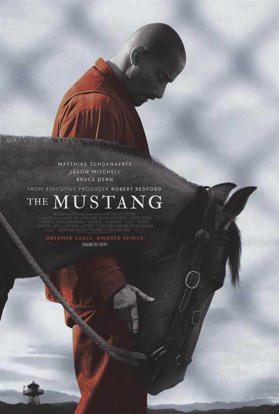მუსტანგი (ქართულად) / The Mustang