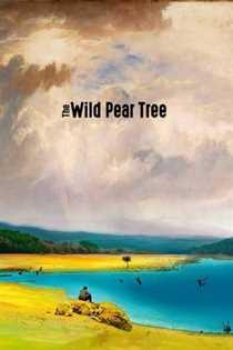 ველური მსხლის ხე (ქართულად)  / The Wild Pear Tree / veluri msxlis xe (qartulad)
